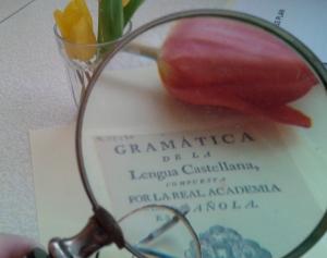 gramática y flores2